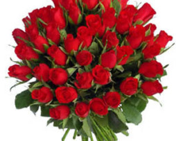 50 Red Roses R600.00