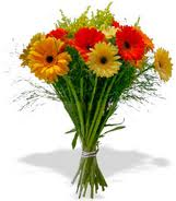 Bunch Gerberas R285.00